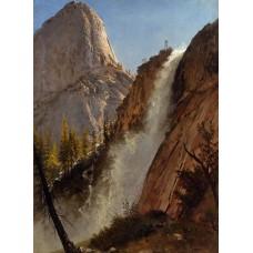 Liberty Cam Yosemite