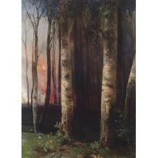 Fire in woods 1883