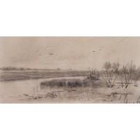 Marshy river 1875