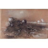 Stumps 1854
