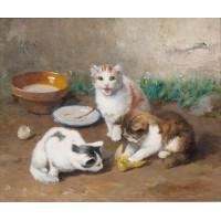 Playful kittens faintly