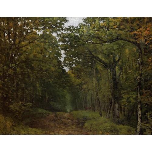 Avenue of Chestnut Trees near La Celle Saint Cloud 2