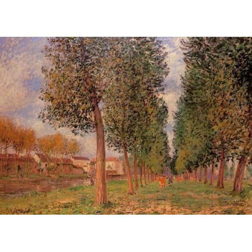 Lane of Poplars at Moret Cloudy Morning