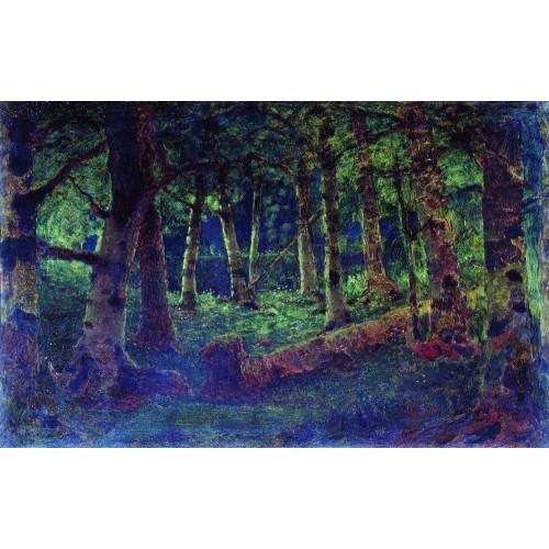 A birch grove 1