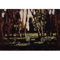 A birch grove 1879 2