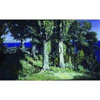 Cypresses on a seashore the crimea 1887