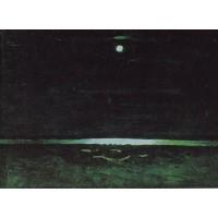 Moonlight night on the dnieper