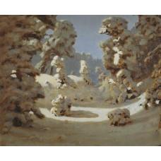 Winter sunlight on the hoar frost