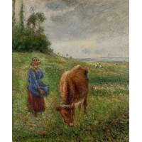 Cowherd Pontoise