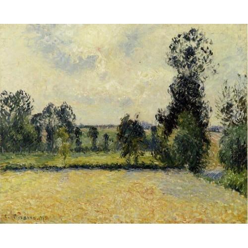 Field of Oats in Eragny