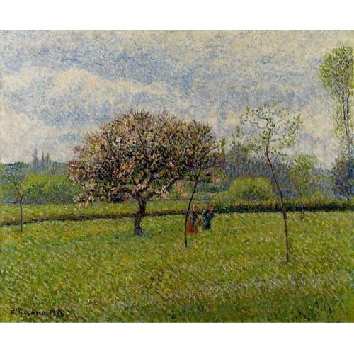 Flowering Apple Trees at Eragny 1