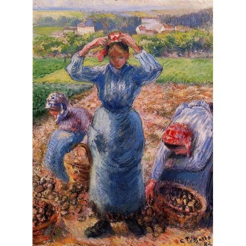 Peasants Harvesting Potatoes
