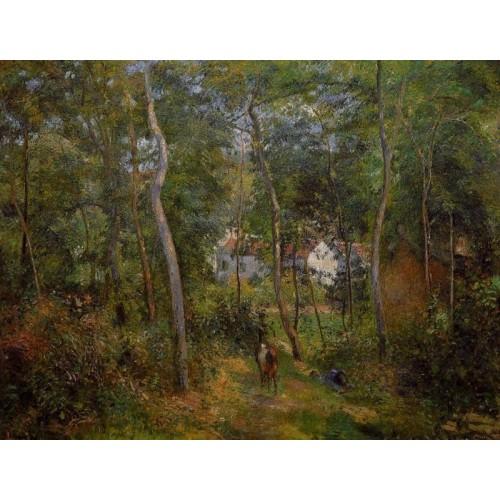 The Backwoods of l'Hermitage Pontoise