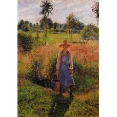 The Gardener Afternoon Sun Eragny