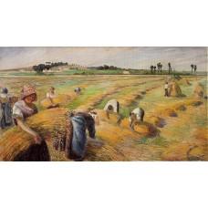 The Harvest 2