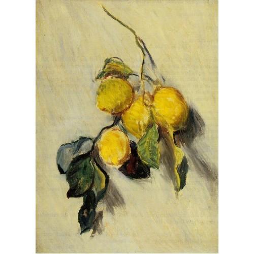 Branch of Lemons