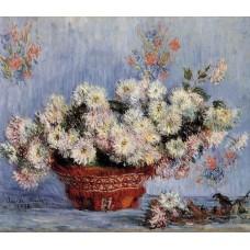 Chrysanthemums 1