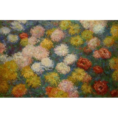 Chrysanthemums 3