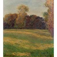 Meadow in the Sun