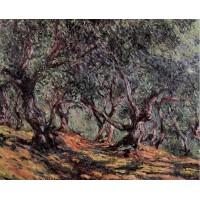 Olive Trees in Bordighera