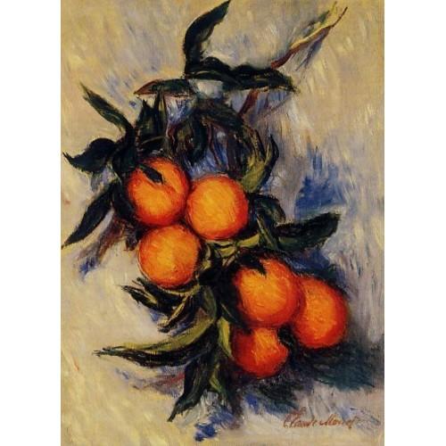 Orange Branch Bearing Fruit