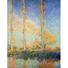 Poplars in the Autumn