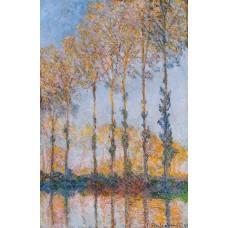 Poplars White and Yellow Effect