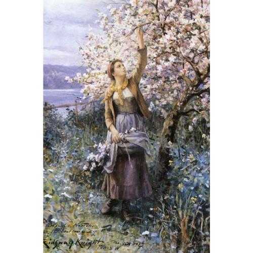 Gathering Apple Blossoms