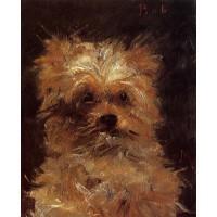 Head of a Dog 'Bob'