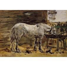 White Horse at the Feeding Trough