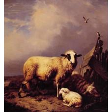 Guarding the Lamb
