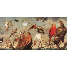 Concert of Birds 1