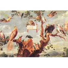 Concert of Birds 2