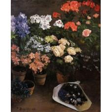 Study of Flowers