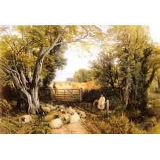 Landscape in Wales
