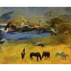 Horses Carmel