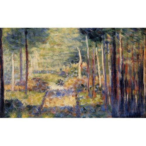 Forest Path Barbizon