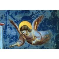 Angel 6
