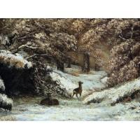 Deer Taking Shelter in Winter