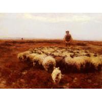 Shepherd on the Meadow