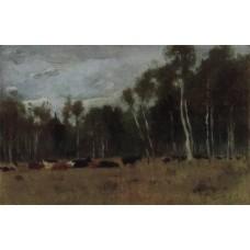 A herd 1890