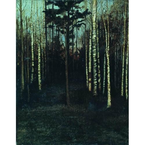 About nightfall grove