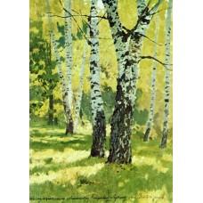 Birch grove 1878