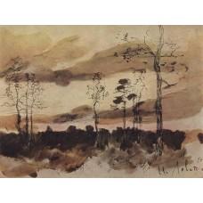Sunset forest edge 1900
