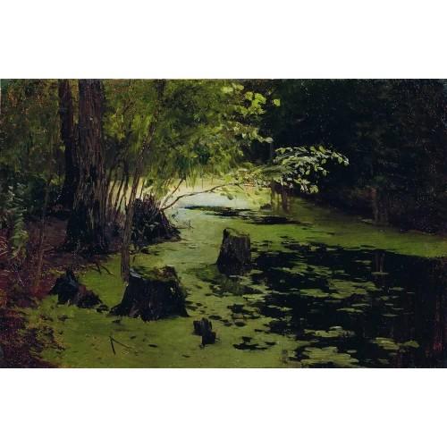 Water margin a pond