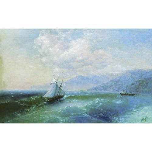 On the coast 1875
