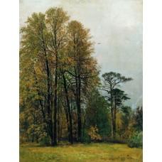 Autumn 1892