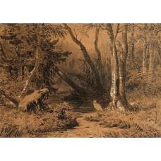 Backwoods 1870