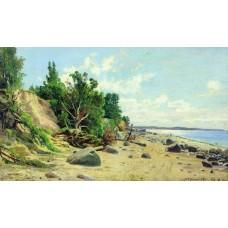 Beach 1890