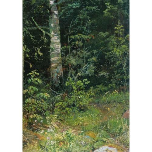 Birch and mountain ash 1878